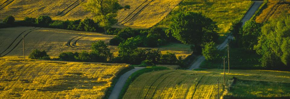 Weg durch die Landschaft